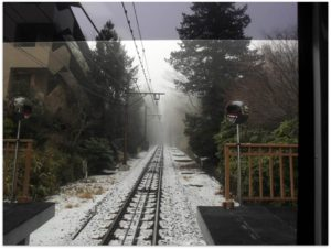 The rail and the fog